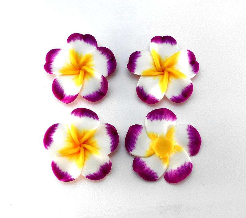 New Purple Tipped Frangipani - 2 pack